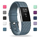 POY Replacement Bands Compatible for Fitbit Charge 2, Special Edition Adjustable Sport Wristbands, Large Slate