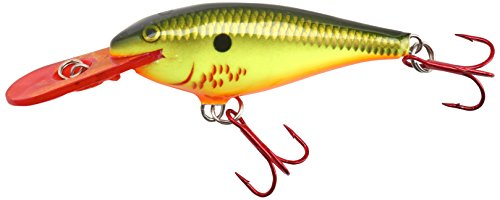 Rapala Shad Rap 05 Fishing lure (Bleeding Hot Olive, Size- 2) For Sale