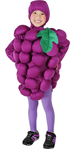 Toddler Grapes Halloween Costume (Size: 2-4T)