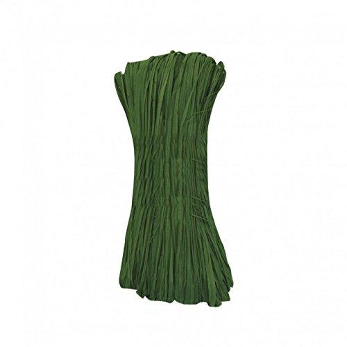 Naturbast 50g grün Raffiabast Bindebast Dekobast Bast