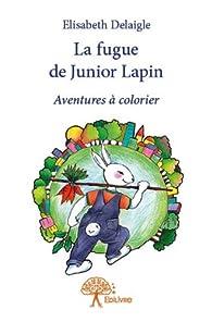 La fugue de Junior Lapin par Elisabeth Delaigle