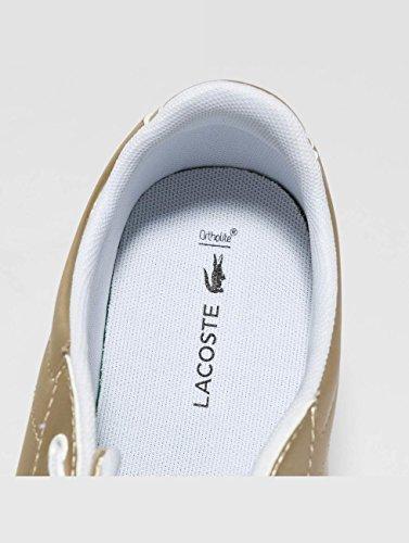 Femmes Lacoste Femmes Couleur Baskets Evo Or Chaussures Carnaby Chaussures z7OcHdwq7