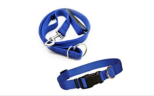 POPPEE Instant Trainer Dog Leash + Collar Trains Dogs 30 Lbs Stop Pulling As Seen On Tv Dog walk