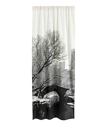 Modern Landscape Photo Print Window Curtain Panel 1pc Room Divider 47 by 98 inch Extra Long Black and White Rod Pocket 100% Cotton City Chic