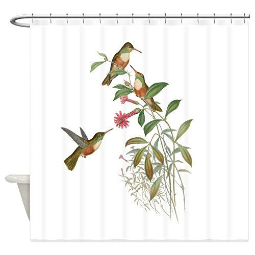 "Chilen Hummingbirds Shower Curtain 60""x72"""