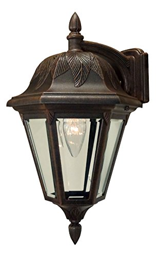Cheap Special Lite Products Floral F-2941-CP/BV Medium Top Mount Light, Copper