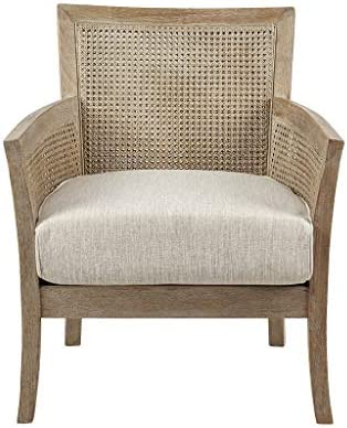 Cheap Madison Park Paulie Accent Chair living room chair for sale