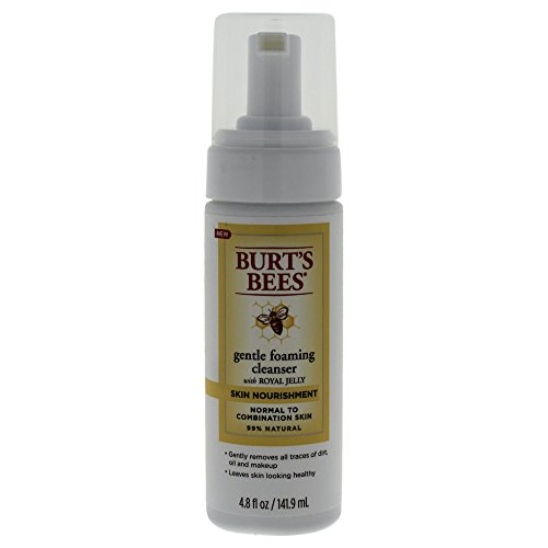 Burt's Bees Skin Nourishment Gentle Foaming Cleanser, 4.8 Ounces