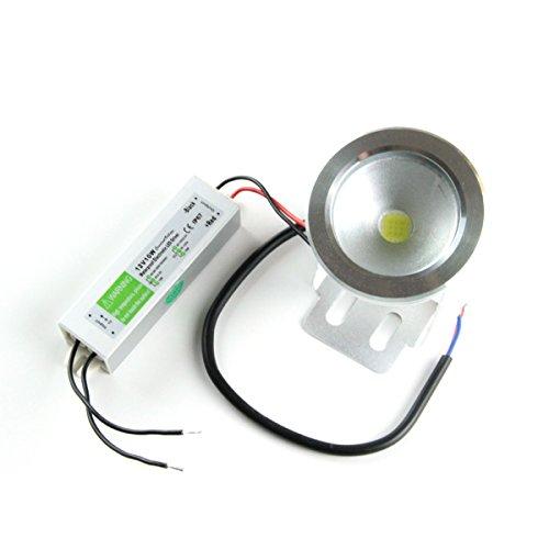 Bloomwin® 12V 10W Warmweiß Teichlampen IP66 Poolbeleuchtung Teichbeleuchtung Unterwasserbeleuchtung Led + 12W/0.8A Netzteil
