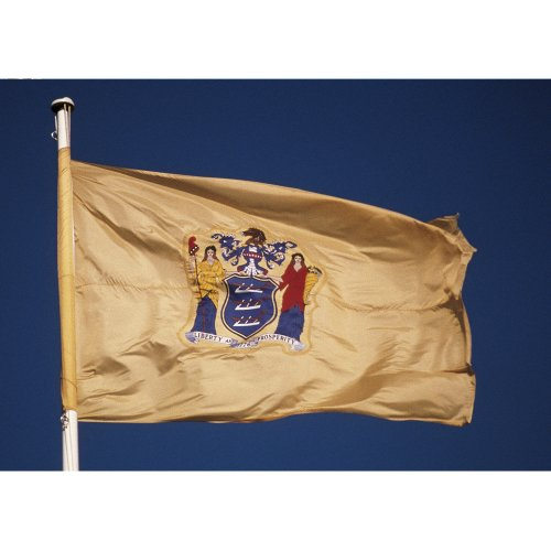 New Jersey Outdoor State Flag (Allied Flag Outdoor Nylon State Flag, New Jersey, 5-Foot by 8-Foot)