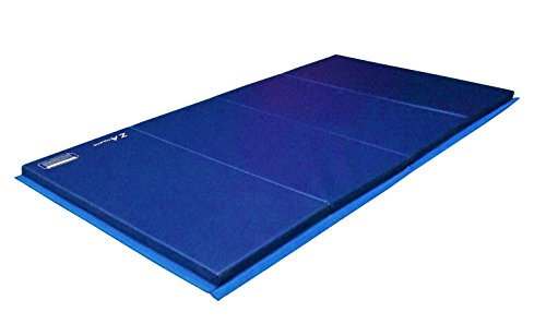We Analyzed 3,997 Reviews To Find THE BEST Bjj Mats