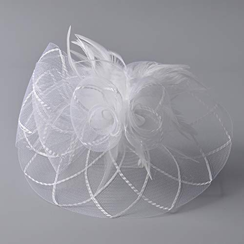 Bestting Women Headwear Fascinator Feather Hat Net Mesh Veil Kentucky Derby Tea Party Wedding,White -