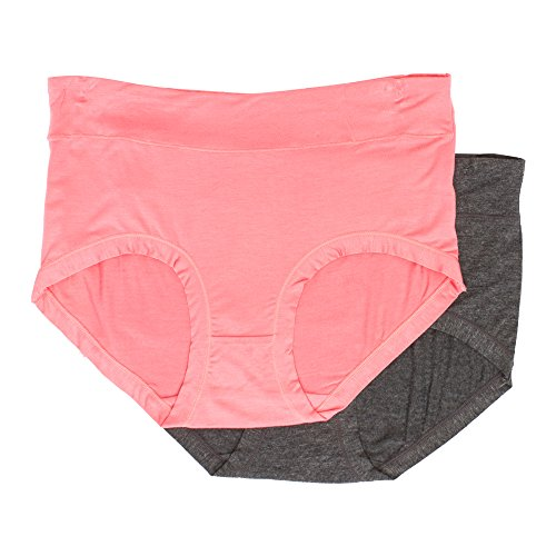 Kathy Ireland Women's 2 Pack Elastic Waist Brief Underwear Panties Spiced Coral/Grey 3X