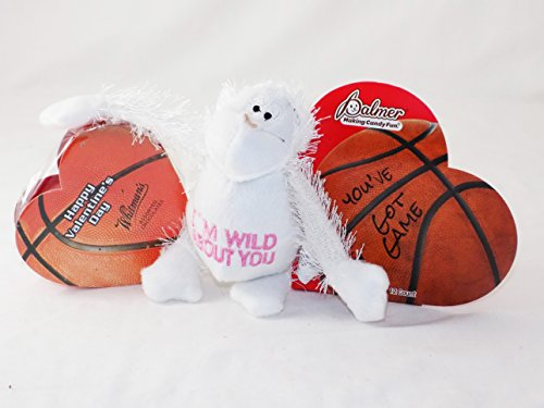 'Perfect for the Boys!' Basketball Sports Themed Valentine Gift Pack (Sports Themed Gift Baskets For Kids)