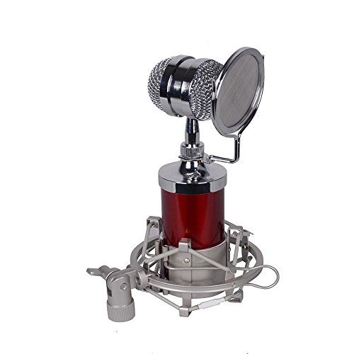 Sound Studio Recording Condenser Wired Microphone BM-8000 Pro With Pop Filter (red)