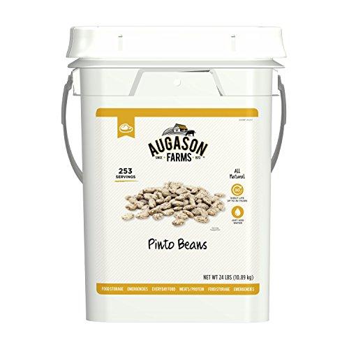 (Augason Farms Pinto Beans Emergency Bulk Food Storage 4 Gallon Pail 253 Servings)