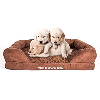 Amazon.com : Sealy Lux Pet Dog Bed | Quad Layer Technology