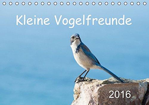Kleine Vogelfreunde (Tischkalender 2016 DIN A5 quer): Kleine Vögel dieser Welt (Monatskalender, 14 Seiten ) (CALVENDO Tiere)