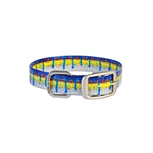 Dublin Dog KOA Fish Rainbow Trout Dog Collar 9