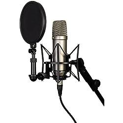 41%2BPPd0XyEL. AC UL250 SR250,250  - Interpreta i tuoi brani preferiti con il migliore microfono karaoke!