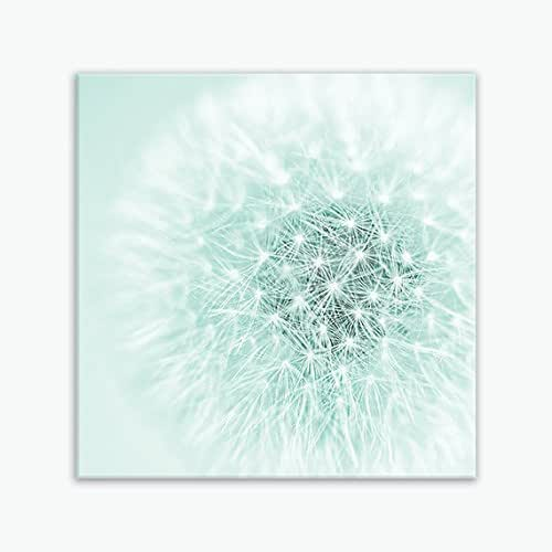 Minimalist Bathroom Large Windows: Amazon.com: Large Dandelion Flower Canvas Bathroom Wall