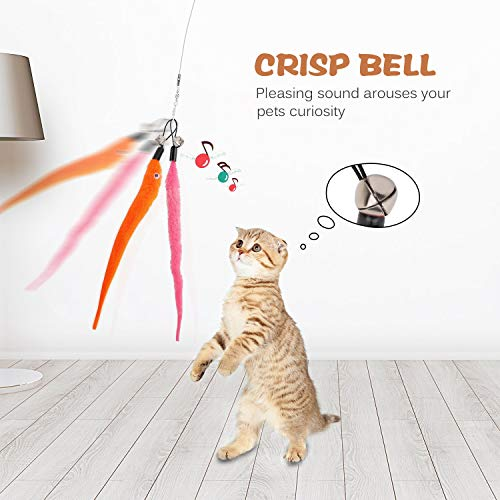 Retractable Cat Toys Wand with 5 Piece Teaser Refills, Interactive Cat Feather Toy for Cat Kitten Having Fun Exerciser Playing 6