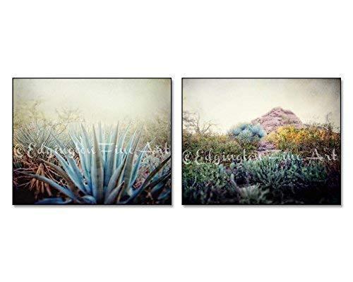 Set of 2 Southwestern Desert Nature Photos 5x7 Inch Prints