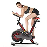 Indoor Cycling Bike, Ultra-Quiet Bicycle, Stationary Bicycle with Flywheel and LCD Display, Adjustable Seat, Cardio Fitness Cycle Trainer Professional Exercise Bike for Home and Gym Use