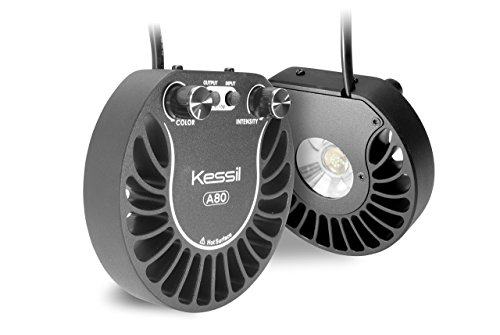 Kessil Tuna Blue A80 LED Light KSA80-TB