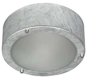 Ranex Dublin - Plafón/aplique, acero galvanizado y cristal