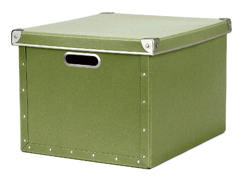 Cargo Naturals Dual File Box, Sage, 10-3/4 by 15-1/2 by 12-1/2-Inch
