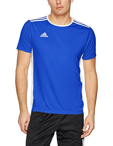 adidas Men's Soccer Entrada Jersey, Bold Blue/White, Medium