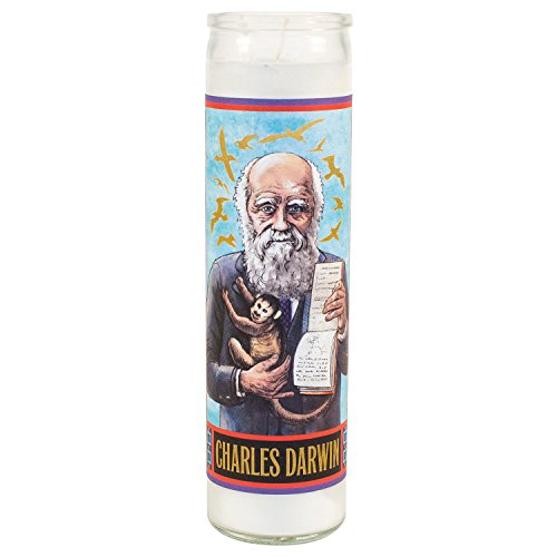 Charles Darwin Secular Saint Candle - 8.5 Inch Glass Prayer Votive -  The Unemployed Philosophers Guild, 3325