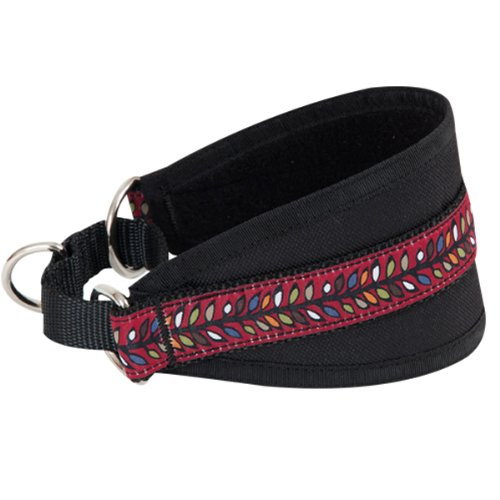 RC Pet Products Bracken Hound Collar, 14-Inch