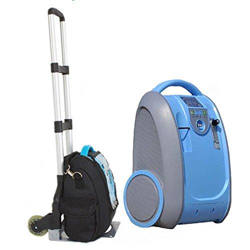 Portable Oxygen Concentrator Air Purifier, Oxygen Generat...