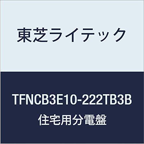 春夏新作モデル 東芝ライテック 小形住宅用分電盤 Nシリーズ IH エコキュート(電気温水器) 30A + IH + オール電化 100A TFNCB3E10-222TB3B 22-2 扉付 機能付 TFNCB3E10-222TB3B B01J9R4R2Q, 教材出版学林舎:76436a2a --- a0267596.xsph.ru
