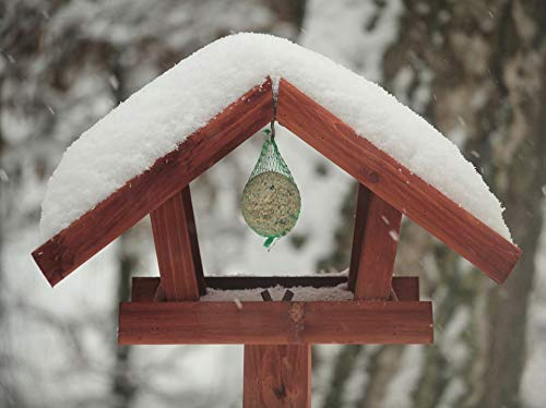 - Home Comforts Peel-n-Stick Poster of Fat Balls Depend Winter Aviary Bird Seed Feed Vivid Imagery Poster 24 x 16 Adhesive Sticker Poster Print