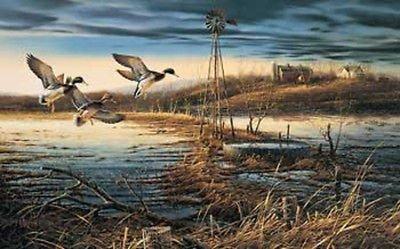 Peck and Gartner Terry Redlin Spring Run-Off Mallard Duck Print