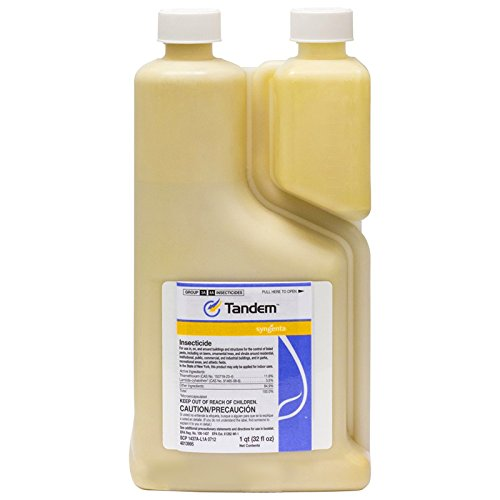 Syngenta 47162 Tandem Insecticide by Syngenta