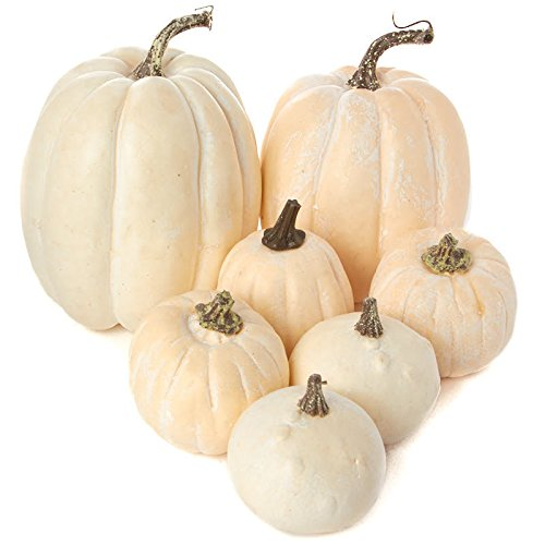 Pumpkins And Gourds - Factory Direct Craft 7 Assorted Size Harvest Off White Artificial Pumpkins & Gourds
