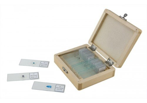 Celestron No.44410  Prepared Microscope Slides (25-Piece Set) (Microscope Slides Prepared compare prices)