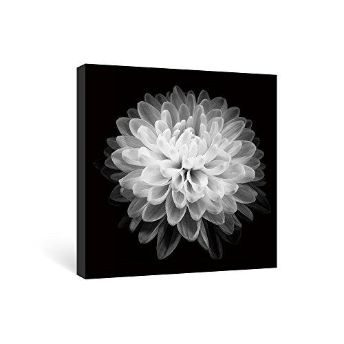 SUMGAR Black and White Wall Art Bedroom Flower Canvas Paintings Floral Pictures Artwork,12x12 in (Wall And White Bathroom Black Art)