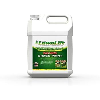 Green Spray Paint For Grass B Q