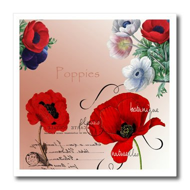 3dRose ht_79337_1 Vintage Pretty Poppies French Botanical Art Iron on Heat Transfer, 8 by 8-Inch ()
