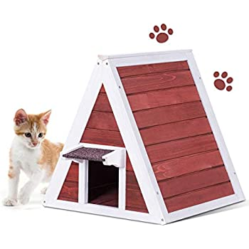 Amazon Com Petsfit Triangle Wooden Cat House With Back