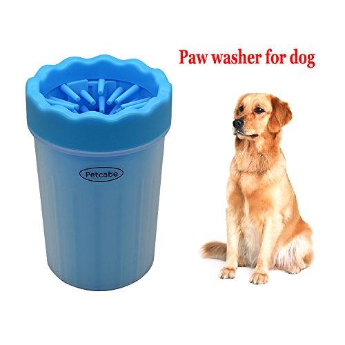 Dog Paws - 9