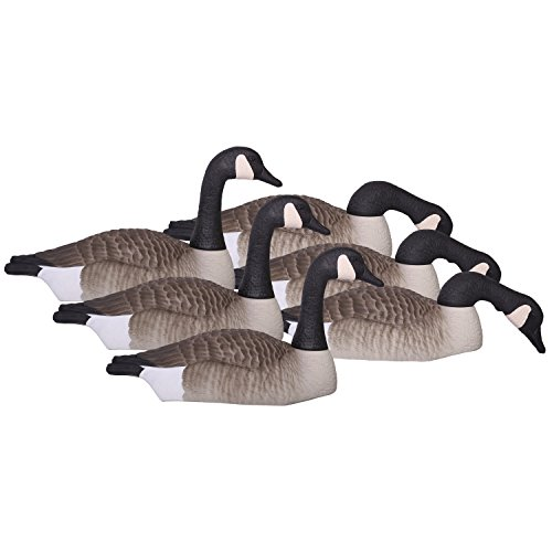 hard-core-brands-elite-series-canada-goose-touchdown-shell-decoys-6-piece