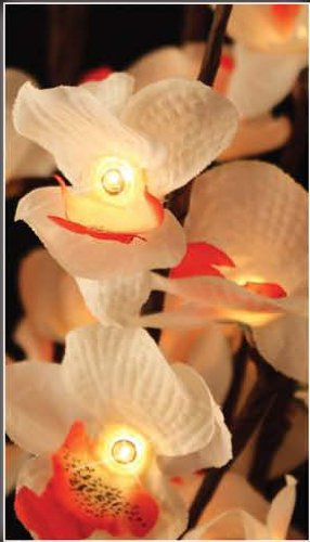 The Light Garden CHBL96 Lighted Cherry Blossoms with 96 Bulbs, 40-Inch Tall