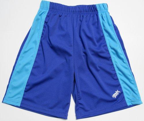 Maui Boys Swim Shorts (Royal/Turquoise, 7)