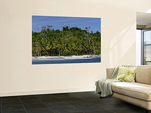 Heavily Palm-Tree Forested Mentawai Islands, Indonesia Wall Mural by Paul Kennedy 48 x 72in by Lonely Planet